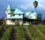 A contemporary California compound