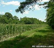A ranch in rurual Georgia