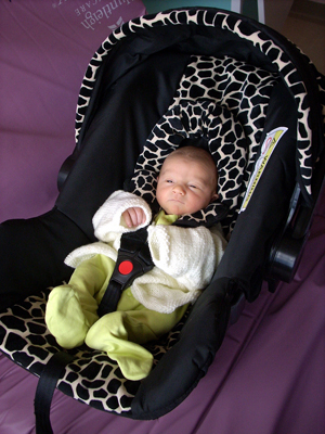 Rear-facing or infant/toddler convertible car seat