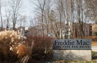 Fannie Freddie Rally Returns With a Vengeance